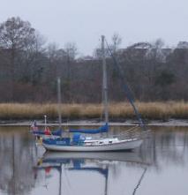 Saga - Sandy Island for wp